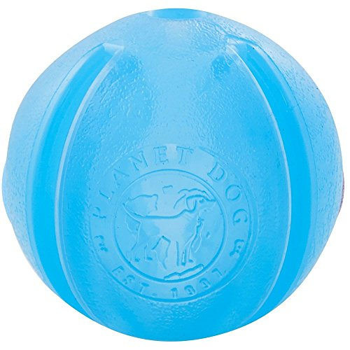 Planet Dog Orbee-Tuff Guru Treat Ball Blue