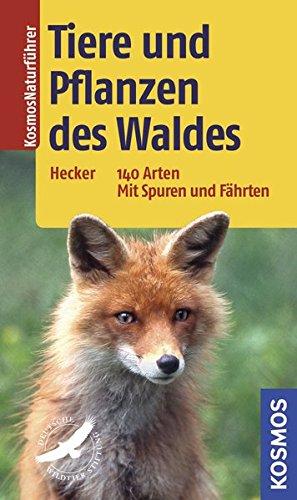 Tiere und Pflanzen des Waldes: 140 Arten Mit Spuren und Fährten
