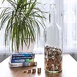 Bottiglia Portamonete in Vetro Velucio - Contiene Oltre 2500€ in Monete da 1€!