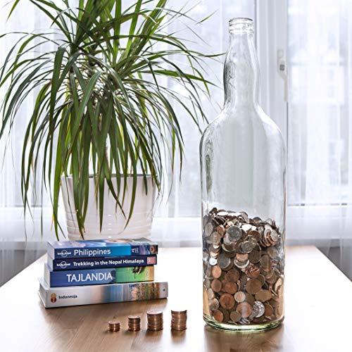 Velucio Glas Sparflasche - Hält über 2.500€ in 1€ Münzen!
