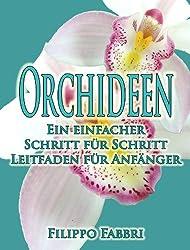 Orchideen - Ein einfacher Schritt für Schritt Leitfaden für Anfänger (German Edition)