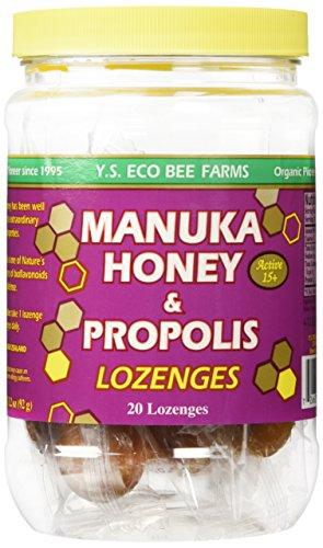 scientific review manuka honey pdf