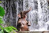Pixblick - Elefant unterm Wasserfall - Hochwertiges Wandbild - Hartschaumplatte 120 x 80 cm