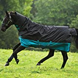 Mio All in One Medium Turnout Rug Black/Turquoise 6ft