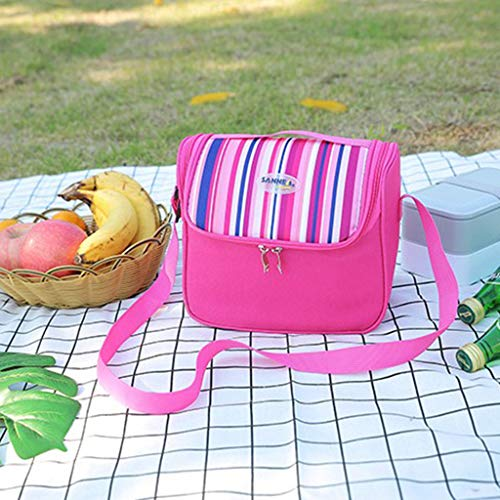 Tensay Isolierte Lunchpaket Camping Picknick Box Schulter Thermische Doppelschicht Für Frauen Männer Kinder Kühler Erwachsene Tote, Anzug für Schule Büro Picknick Im (Baby Flug Anzug)