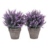 T4U Künstliche Blumen Bonsai Kunstpflanze im Topf, Dekorativ Plastik Zimmerpflanzen Series - Lila Gras, 2er Set