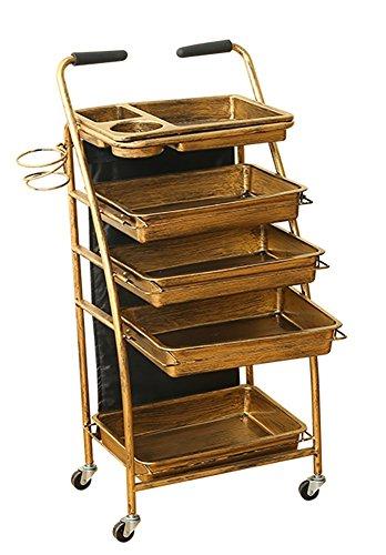 5 Tiers Salon Wagen Multifunktional Tablett Haar Lager Friseurwagen Salon Rollwagen Trolley Schönheit Spa Bilden Wagen Golden Schubladen