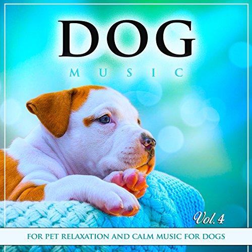 House Training (Dog House Training)