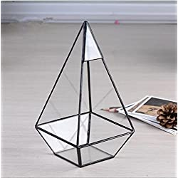 GRASSPER Geometric Terrarium Glass Metal Prism 22cm Table Top / Planter for Air Plant / Succulent / Indoor Plants for Home / Office / Wedding Decoration
