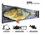 DARTS Fisch Maßband Perch Ruler 60 cm mit Anschlag Barsch