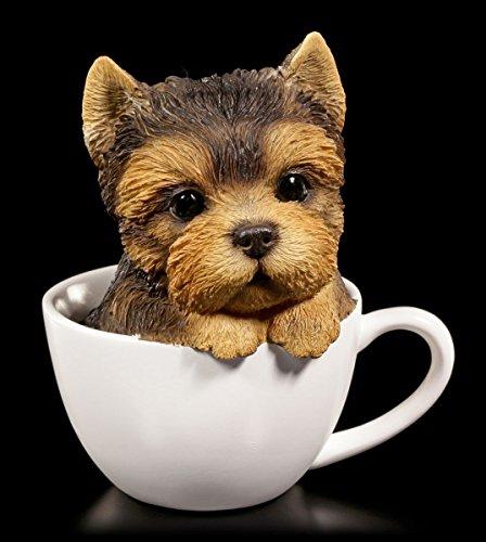 Süßer Yorkshire Terrier Welpe in Tasse | Figur Hund Deko Statue Geschenk lustig (Yorkshire Welpen)