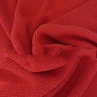 Beautyrain 10 Unids Microfibra Toalla de Limpieza del Vehículo de Coche Paños Suaves Plumero 5 Colores 25x25 cm Rojo
