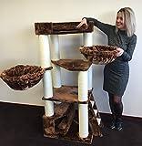 RHRQuality Kratzbaum große Katze Corner Coon Braun. Stabil 48KG!. Sisalstämme 12cmØ Katzenkratzbaum für große Katzen. Liegemulde 2 x 45cmØ geprüft bis zu 23kg