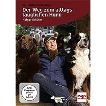 Der Weg zum alltagstauglichen Hund mit Holger Schüler
