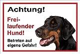 Schild Warnschild - Achtung freilaufender Hund – Betreten auf eigene Gefahr - Hund Hundeschild 30x20cm Hartschaum Aluverbund -S31W