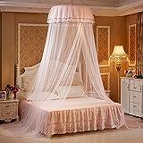 Navigatee Princess Bed Valance, hängende Runde Spitze Baldachin Bett Netting Moskitonetz Dome Comfy Moskitonetz für Kind Student Krippe Twin Queen-Bett (Beige)
