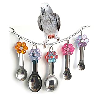 Bird Swing Toy with Metal Spoons for Parrot Budgie Parakeet Cockatiel Conure Lovebird African Greys Amazon Cockatoo Macaw Cage Perch Bird Swing Toy with Metal Spoons for Parrot Budgie Parakeet Cockatiel Conure Lovebird African Greys Amazon Cockatoo Macaw Cage Perch 51dj 2BA8JsNL