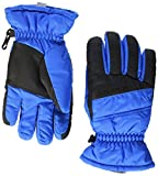 Ziener Kinder Lamosso Glove Junior Alpinhandschuhe, Persian Blue, 4