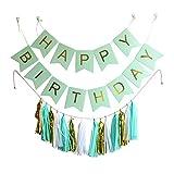 """Ipalmay Wimpelkette """"Happy Birthday"""", Banner mit 15Quasten aus Seidenpapier, Girlande mint"""