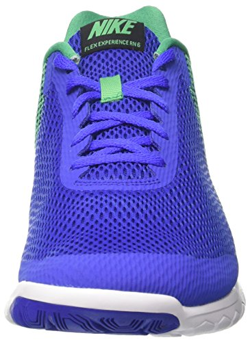 Nike Herren Flex Experience RN 6 Laufschuhe Blau (Paramount Blue/black/stadium Green/white)