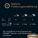 Cesar Nassfutter Feines im Frischebeutel – Variation, 2er Pack ( 2 x 24 x 100 g) - 3