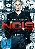 NCIS - Season 14  Bild