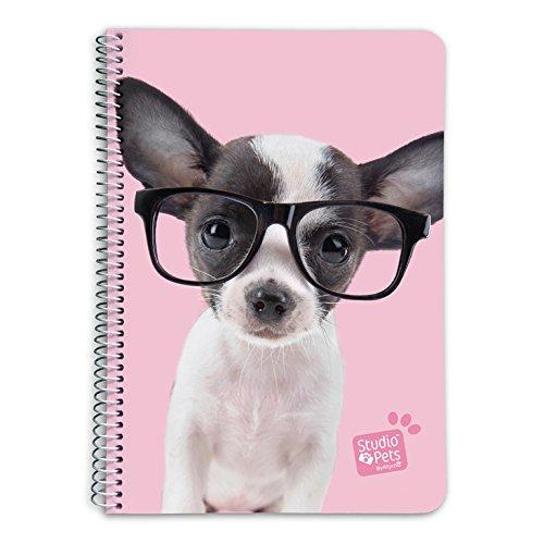 Grupo Erik CTDA50025 Quaderno appunti A5  Studio Pets Cane Glasses