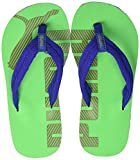PUMA Epic Flip v2 PS, Infradito Unisex-Bambini, Blu (Surf The Web-Irish Green), 28 EU