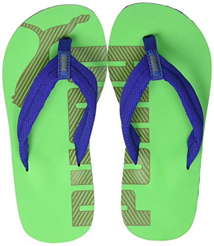 Puma Unisex-Kinder Epic Flip v2 PS Zehentrenner Blau (Surf The Web-Irish Green) , 31 EU