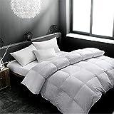 Littlefairy daunendecke,Von der Kern Erwachsene Doppel volle Cotton Dicke Gänsedaunen garantieren warme Winter Quilt