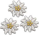 alles-meine.de GmbH 3 er Set: Edelweiß 4,1 cm * 3,8 cm Bügelbild Aufnäher Applikation Patch Blume