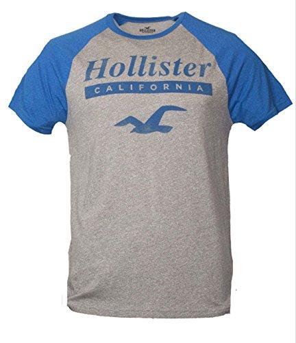 hollister-herren-men-t-shirt-m-gray-074
