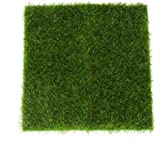 INDIADOR Micro Landscape Moss Ornament Turf Faux Lawn for Miniature Garden (Green)