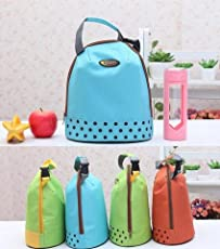 Style Eva Fashion Picnic Heat Bag Thicker Oxford Cloth Isolated Lunch Box for Kids Shoes for Men and Women (Cooler_Bag_0003, Multi-Colour)