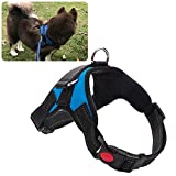 Dog Harness,Pet Chest Harness,Pet Vest Multifunction Traveling Walking Mesh Harness Pet Vest with Handle Adjustable Safety Nylon Walking TrainingPet Harness Set