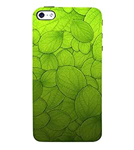 Leaf Design Pattern 3D Hard Polycarbonate Designer Back Case Cover for Apple iPhone 5