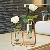 PuTwo Vasen Satz von 2 Metall Blumenvasen Skandinavische Glasvase Rose Gold Väschen Transparente Pflanze Vase Glasvasen Retro Vasen Vintage Väschen Mini Vasen Dekorationen für Wohnzimmer - Rose Gold