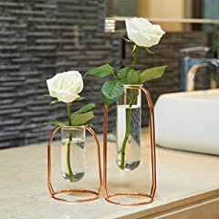 Idea Regalo - PuTwo Vases Set di 2 Vasi di Fiori in Metallo Vaso di Vetro Fioriera Terrari Vasi Dorati Vaso in Oro Rosa Vaso per Piante Vasi in Vetro Cilindro Vaso Decorazioni per Soggiorno - Oro Rosa