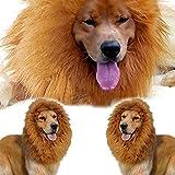 Rrunzfon Parrucca per Animali più Grande Costume da Leone Adatto per Cani Circonferenza Cervicale 26-30 cm Carino Decorazione di Moda in Stile Occidentale Unica