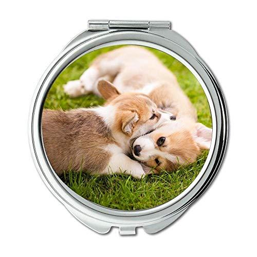 Yanteng Spiegel, Kleiner Spiegel, golden Retriever Welpen Hund, Taschenspiegel, 1 X 2X Lupe