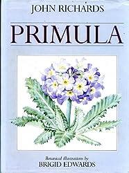 Primula by John Richards (1993-06-05)
