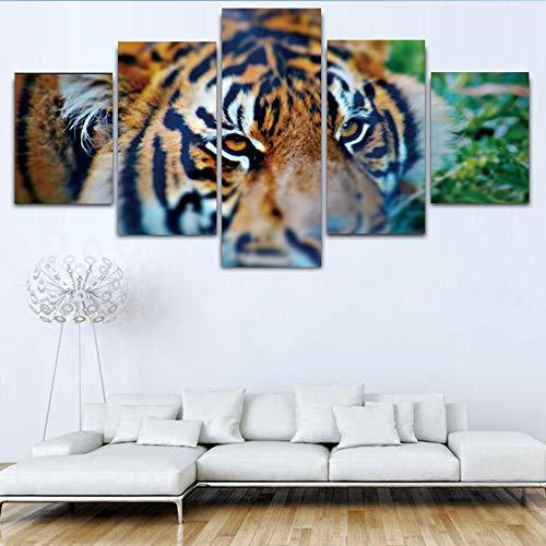 HQATPR Leinwand Malerei Tiger Wild Animals 5 Stücke Hd Print Leinwand Malerei Wanddekor Moderne Poster Wohnzimmer Wandmalereien Chart Kunstwerk Wohnkultur Kleine Größe Mit Rahmen -