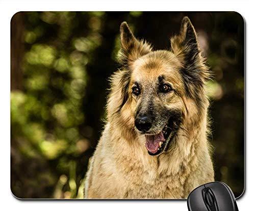 Gaming-Mauspads, Mäusematte, Shepherd Mix Dog Pet Mix Happy Canine Portrait