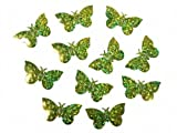 SiDeSo® Konfetti Streudeko Babyparty Kinder Geburt Geburtstag (15g Holo grün Schmetterlinge)