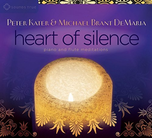 Heart of Silence by Peter Kater