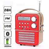 Mini-DAB-Digitalradio und FM, Bluetooth und USB Play, Timer-Funktion und Wecker-Set mit Wiederaufladbar Batterie