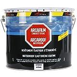 Etancheite toiture peinture résine anti infiltration tuile béton fissure membrane réparation ARCAFILM