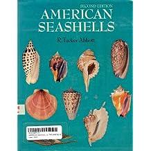 American Seashells