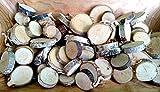 500 g - Birkenscheiben rund 2 - 6 cm Holzscheiben