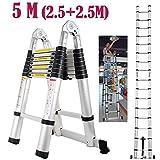 Autofather Escalera telescópica de Aluminio Extensible de 5 m con Marco en A, Multiusos, 16 peldaños